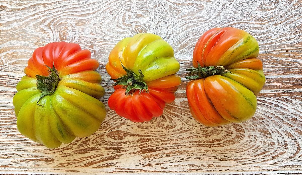 Quiche de tomate kraft - 3